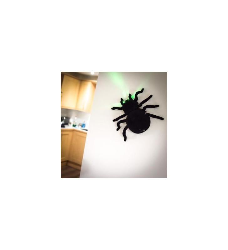Wall Climbing Spider