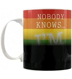 Nobody Knows I'm Gay Heat Changing Mug