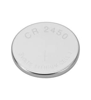 CR2032 Button Battery