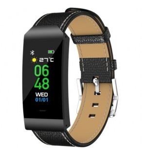 Denver BFH250 Fitness Watch